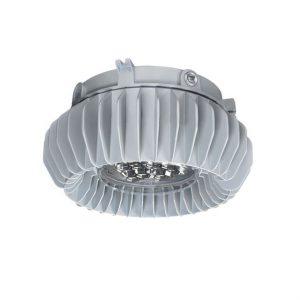 Appleton Mercmaster LED